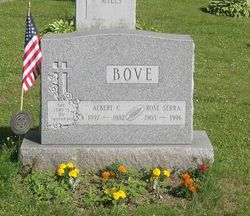 Rose <I>Serra</I> Bove