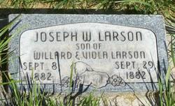 Joseph Willard Larson, Jr