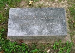 Leland Walker Carr Jr.