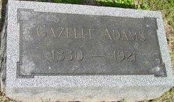 "Gazelle ""Gazella"" <I>Romerill</I> Adams"