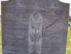 Minerva Jane <I>Robertson</I> Angel