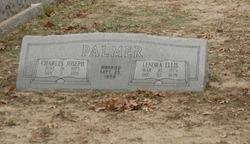 Lenora Ellis Palmer