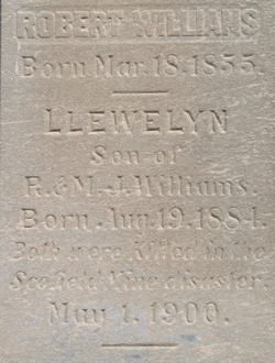 Llewelyn Williams