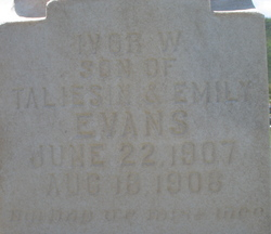 Ivor W Evans
