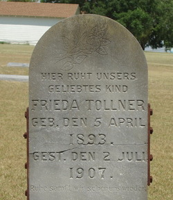 Frieda Tollner