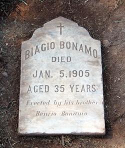 Biagio Bonamo