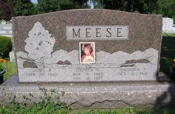 Stephen Robert Meese
