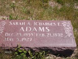 Sarah Alice <I>Gardiner</I> Adams