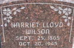 Harriet Lloyd Wilson