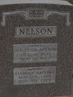 Elvina Caroline <I>Halling</I> Nelson