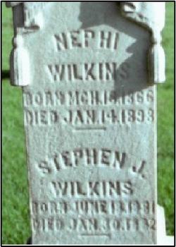 Stephen Job Wilkins