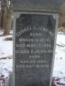 George Colman Jenkins