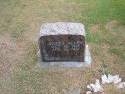 Clara Agnes <I>Anderson</I> Allen
