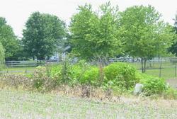 Rietmann Cemetery