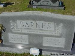 Elsie L. Barnes