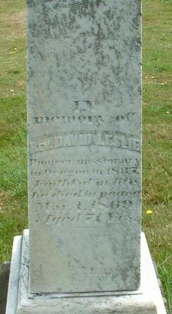 Rev David Leslie