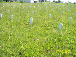 Roth Road Amish Cemetery