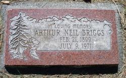 Arthur Neil Briggs