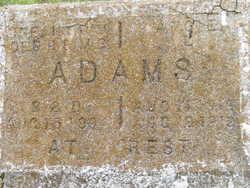Angie L Adams