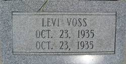 Levi Voss