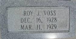 Roy J Voss