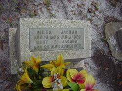 Giles E. Jacobs