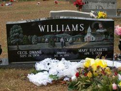 Mary Elizabeth <I>McCulley</I> Williams