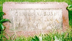 Clara A <I>Dewitt</I> Bush