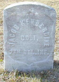 Jacob Kenderdine