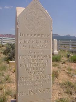 Pvt George Deliverance Wilson