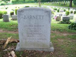 Alexander G. Barnett
