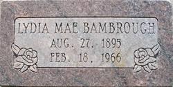 Lydia Mae Bambrough