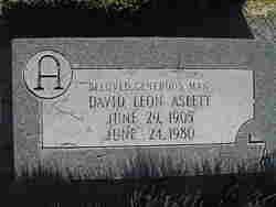 David Leon Aslett