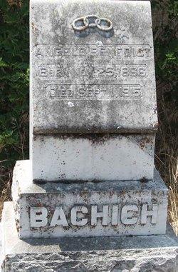 Angelo Benedict Bachich