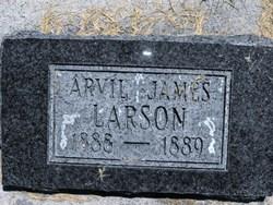 Arvil James Larson