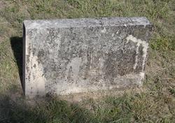 Annie Elizabeth <I>Richardson</I> Camron