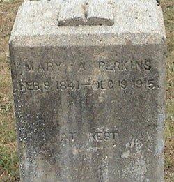 Mary Ann <I>Wood</I> Perkins