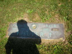 Ray B Suter