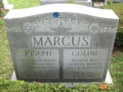 Joseph Marcus