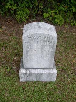 Wayland Williams