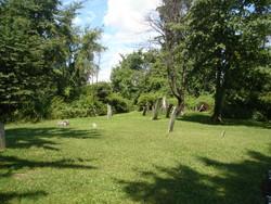 Van Allen Cemetery