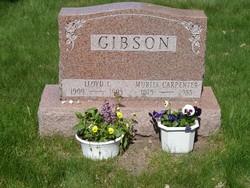 Lloyd Lester Gibson