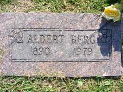 Albert John Berg