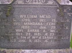 Sarah A. <I>Mead</I> Mead