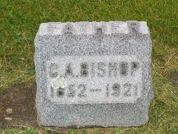 Charles Albert Bishop