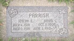 Joseph Cook Parrish