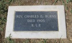 Rev Fr Charles E. Burns