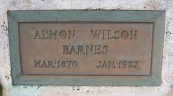 Almon Wilson Barnes