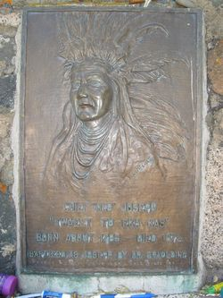 "Chief ""The Elder"" Joseph"