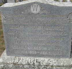 Ophelia Willson <I>Wilson</I> Wallace